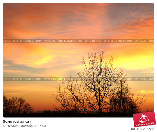 Золотой закат, фото № 218535, снято 20 февраля 2017 г. (c) ElenArt / Фотобанк Лори