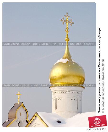 Золотые купола часовни на Химкинском кладбище, фото № 243231, снято 18 февраля 2006 г. (c) Анатолий Заводсков / Фотобанк Лори