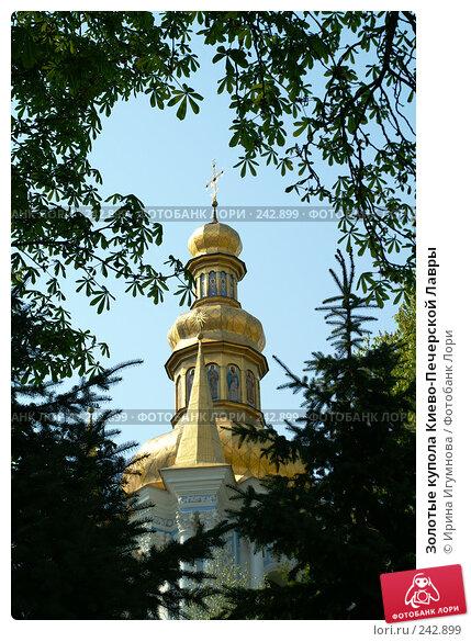 Купить «Золотые купола Киево-Печерской Лавры», фото № 242899, снято 30 мая 2006 г. (c) Ирина Игумнова / Фотобанк Лори