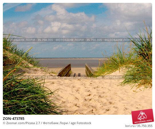 ZON-473785. Стоковое фото, фотограф Zoonar.com/Picasa 2.7 / age Fotostock / Фотобанк Лори