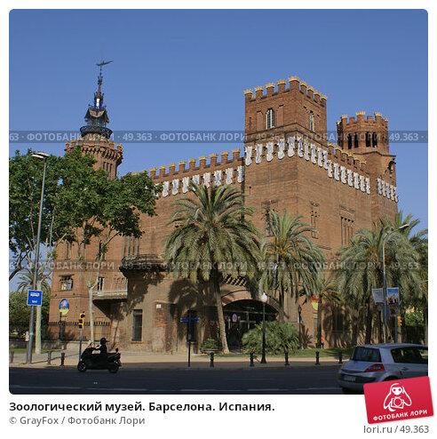 Зоологический музей. Барселона. Испания., фото № 49363, снято 24 мая 2007 г. (c) GrayFox / Фотобанк Лори