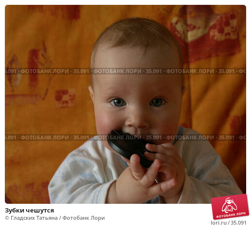 Купить «Зубки чешутся», фото № 35091, снято 24 апреля 2007 г. (c) Гладских Татьяна / Фотобанк Лори