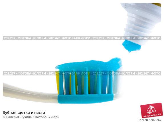 Зубная щетка и паста, фото № 202267, снято 5 декабря 2007 г. (c) Валерия Потапова / Фотобанк Лори