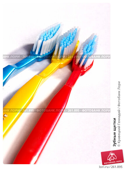 Зубные щетки, фото № 261895, снято 3 января 2005 г. (c) Кравецкий Геннадий / Фотобанк Лори
